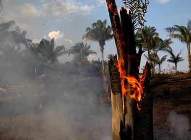 亚马逊雨林火灾浓烟笼罩巴西城市上空