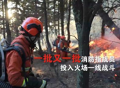 《应急时刻》:森林防火2019年度盘点