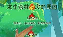 这些森林防火常识,你get到了么?