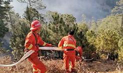 四川木里森林火灾初步查明起火原因
