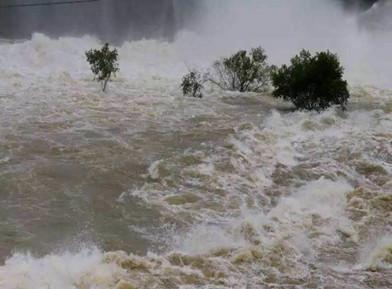 面对洪涝我们该如何避险?