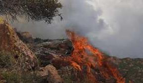 7个省份进入秋季森林防火期!这个防火警示片一定要看