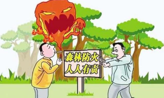 贵州盘州市法院公开审理两起失火案件 被告人不但获刑还要补种树