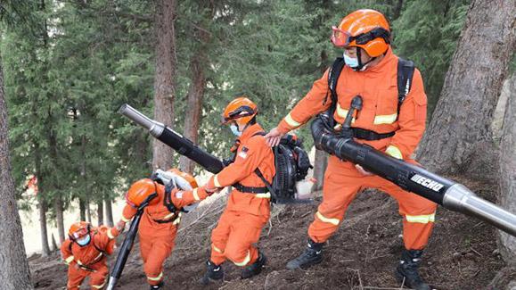 """新疆森林消防:在""""绿色谷底""""开展""""橙红""""行动"""