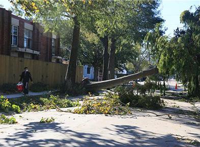 """飓风""""泽塔""""登陆美国南部至少6人死亡"""
