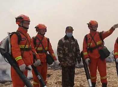 应急管理部森林消防局:去年森林草原火灾次数和受害面积双下降