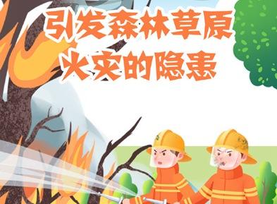 引发森林草原火灾的隐患