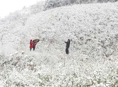 华北东北等地或迎今年入秋以来首场寒潮