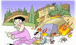 损失千万被判4年!一村民上坟烧纸引发森林火灾教训令人深思