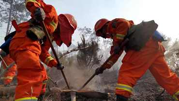 高森林火险天气警报(2020年第74期)